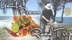 Yamba Prawn Road Trip